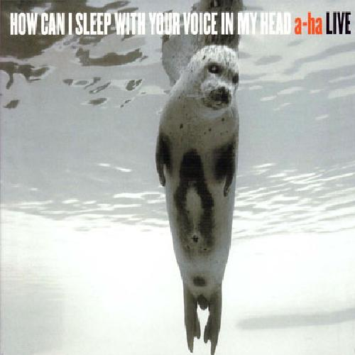 2003 - How Can I Sleep With Your Voice In My Head